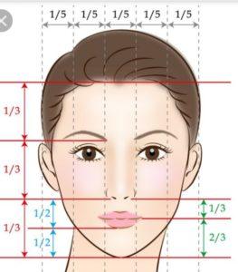 平均 顔 の 大き さ